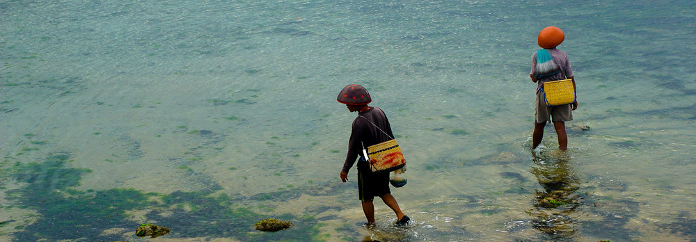 Balinese fishermen walk through the shallows. Bali, Indonesia.