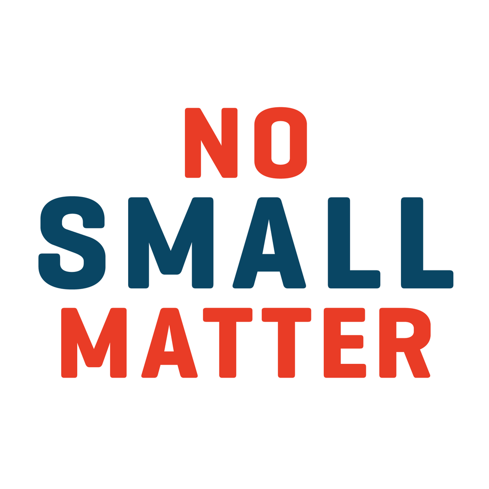 No Small Matter Dec 6th Umf Maineaeyc