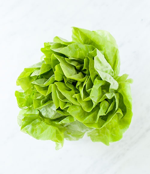 How to store lettuce and how to wash lettuce and keep it crisp. The ultimate guide to washing and storing salad greens. | Loveleaf Co. | #salad #lunch #easyrecipe #work #healthy #glutenfree #paleo #vegan #saladgreens #lettuce