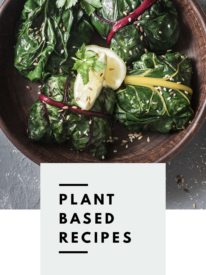 botanical-folk-plant-based-recipes.png