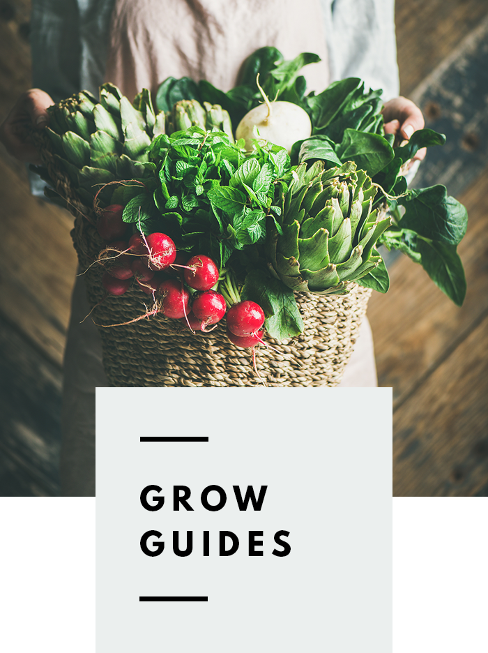 botanical-folk-grow-guides.png