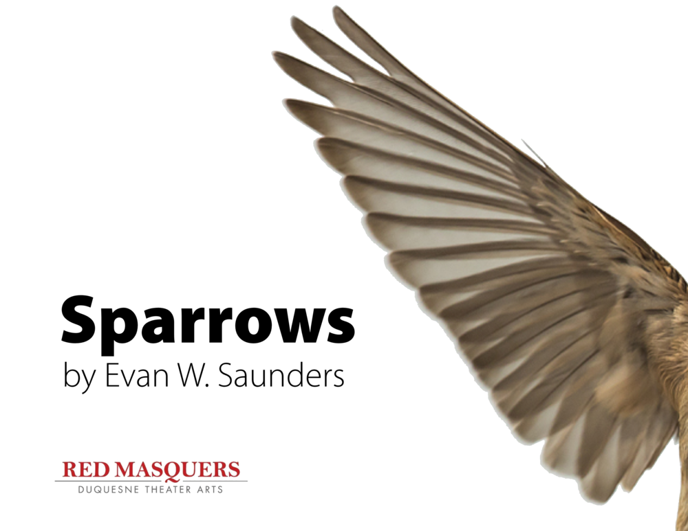 Sparrows.png