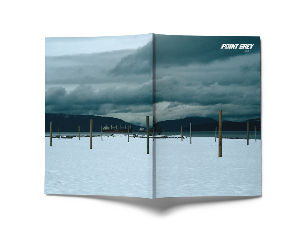 PointGreyCover2_mockup.png