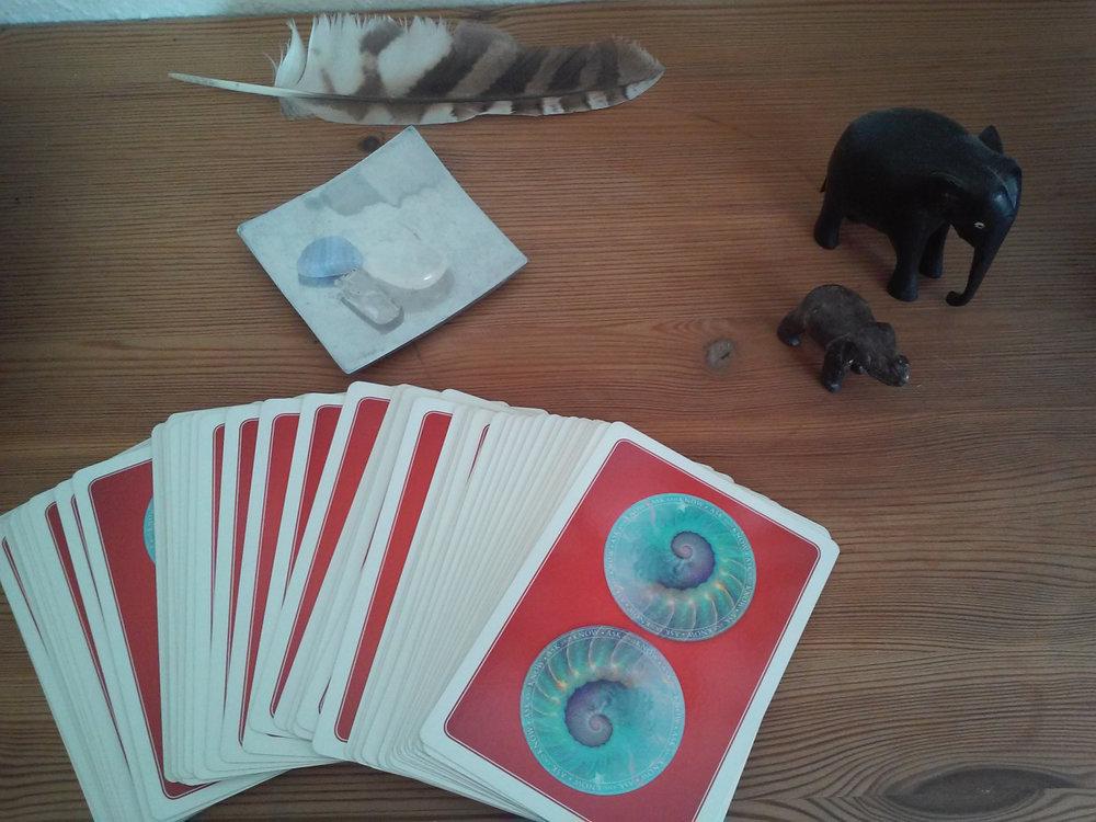Wisdom of the oracle cards af Colette Baron-Reid