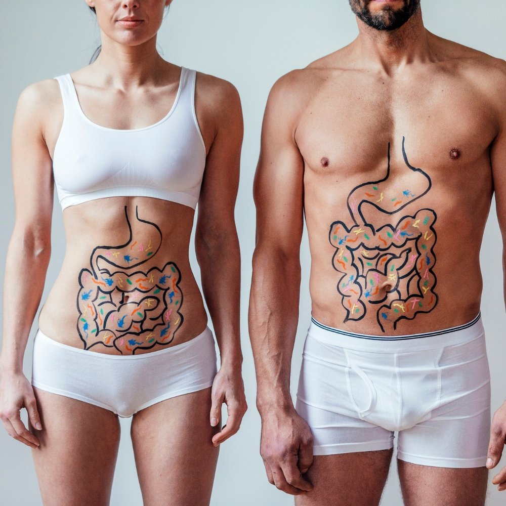 male-and-female-intestinal-health-concept-picture-id892955980.jpg