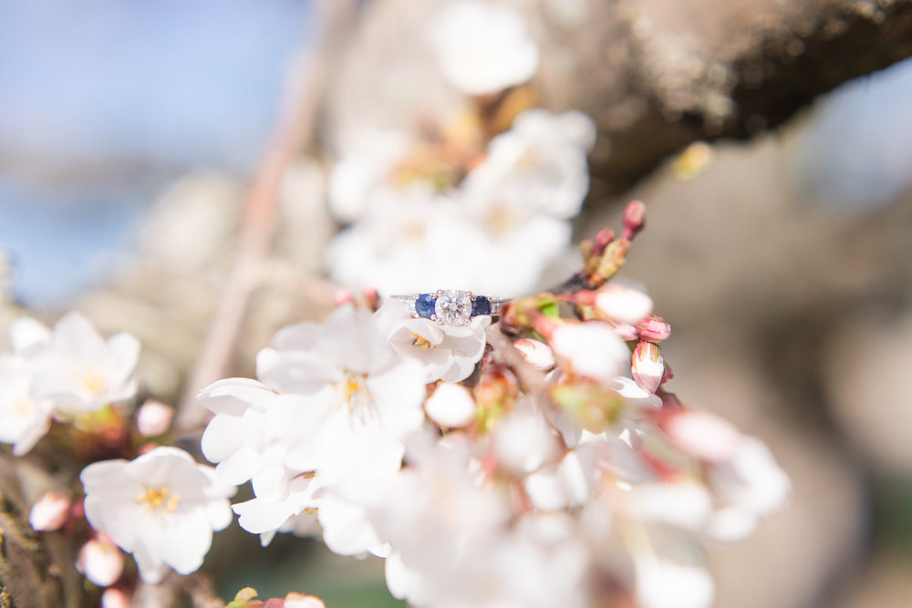 I LOVED Mary Ann's engagement ring! It was so gorgeous sparkling in the sunlight!