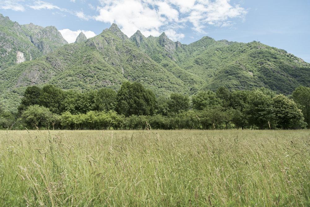 I campi di Ornavasso