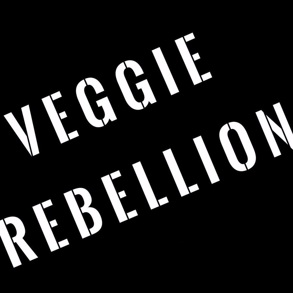 Vegan Rebellion - Vegan Grocery in Glendale, AZ- Specializing in all your vegan essentials for life. Promoting plant-based living for healthy people, planet, and animals.
