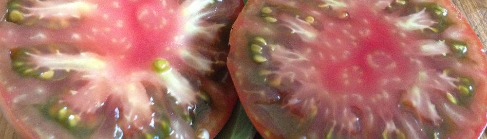 Closeup-tomatoes-juicy.jpg