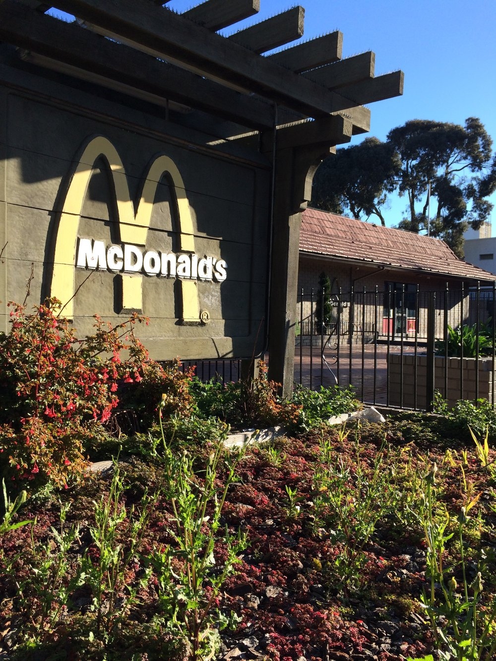 McDonald's on Haight & Stanyan, Stanyan view