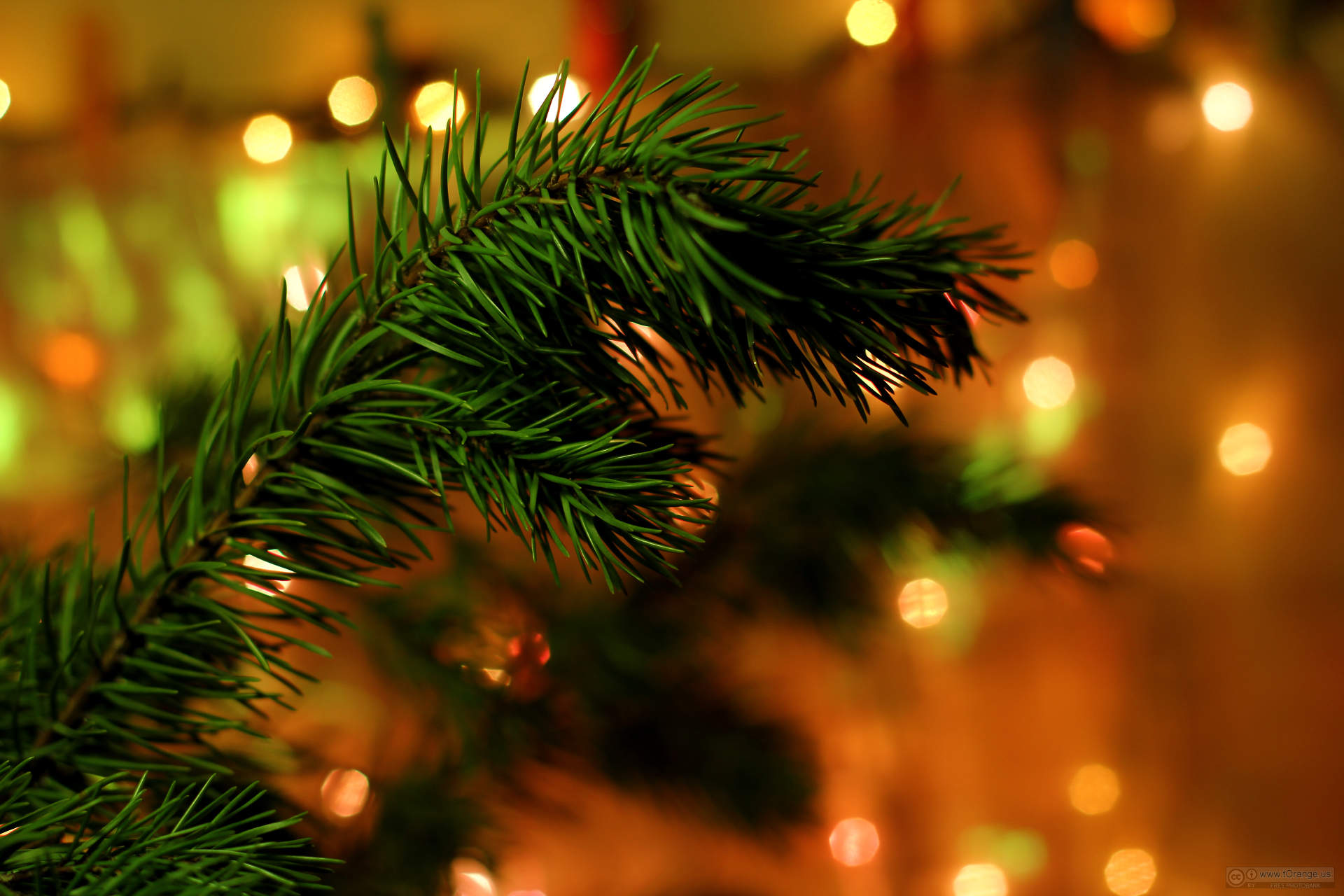 colorado country christmas gift show - Colorado Country Christmas