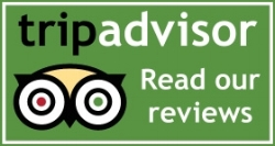 Read-Our-Reviews-On-Tripadvisor.jpg