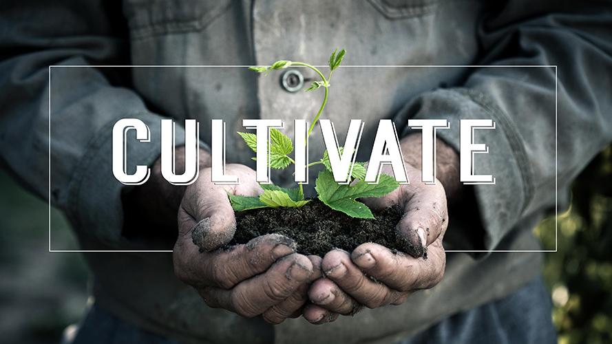 Cultivate 2.jpg