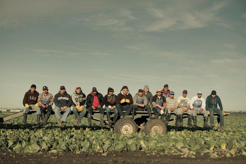 120210_Rio_Farms_Camarillo-126.jpg