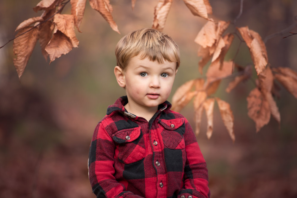 Little Boy in Red Plaid Shirt Holiday Mini Session