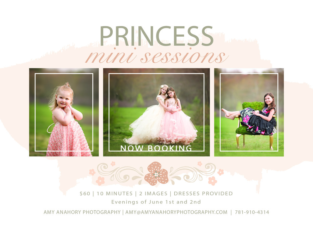 PrincessMiniSessions.jpg