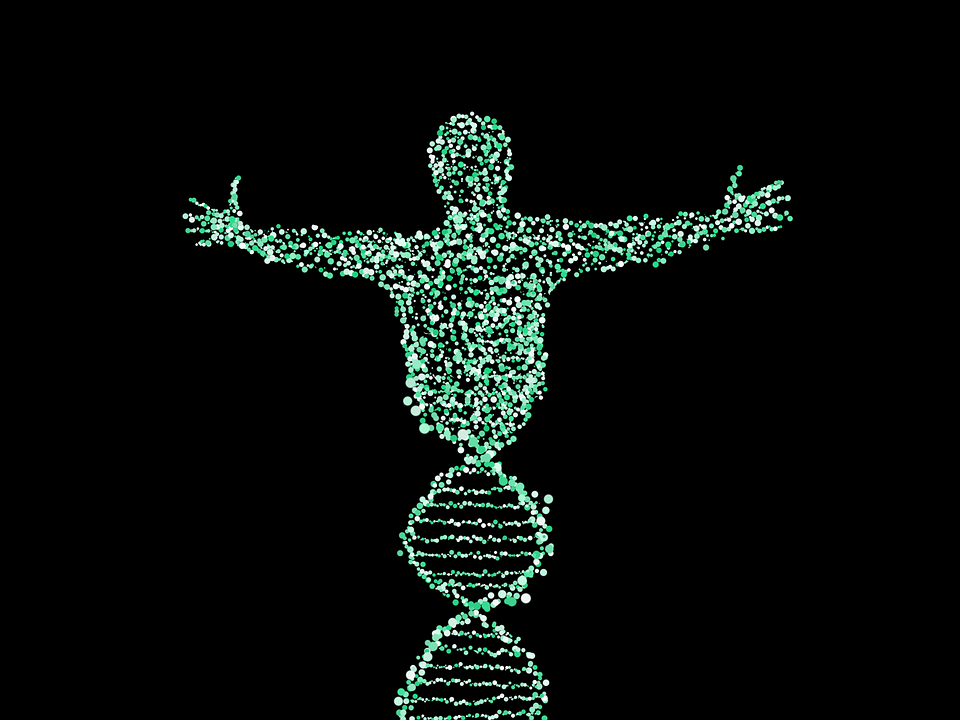 man-dna-genes-gmo-genetically-modified.png