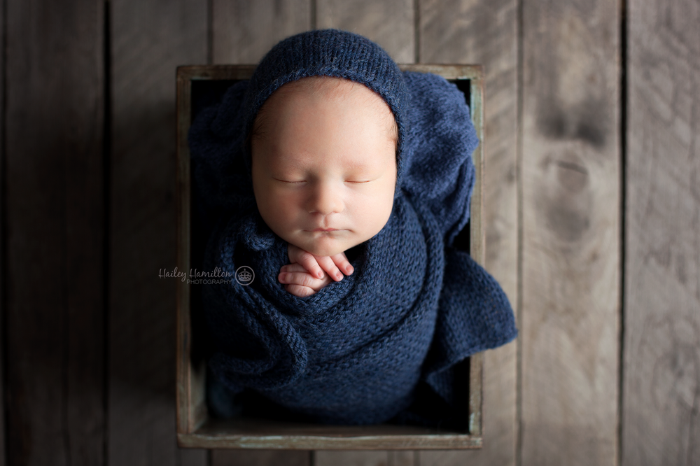 Hailey-Hamilton-Photography-newborn-photo-studio.png