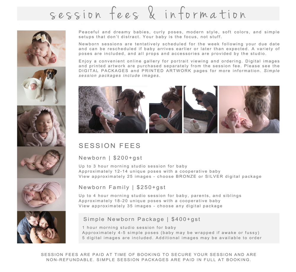 Newborn photography session information.png