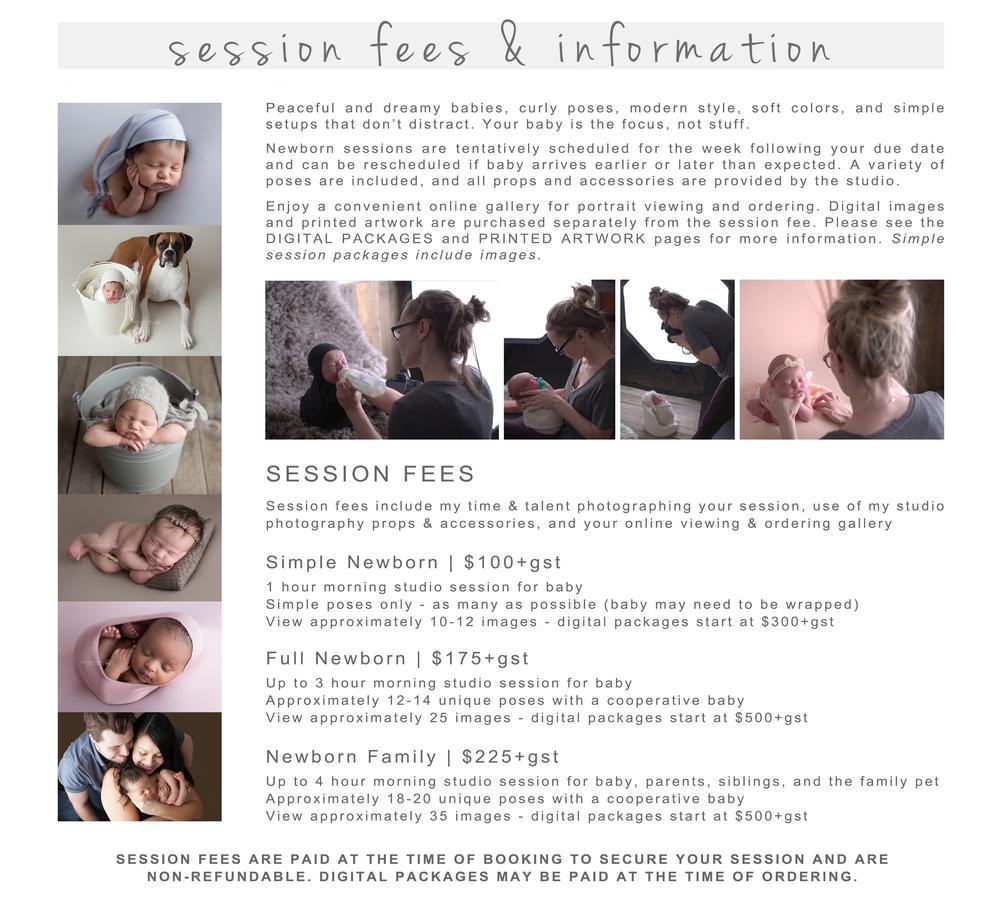 Session Information