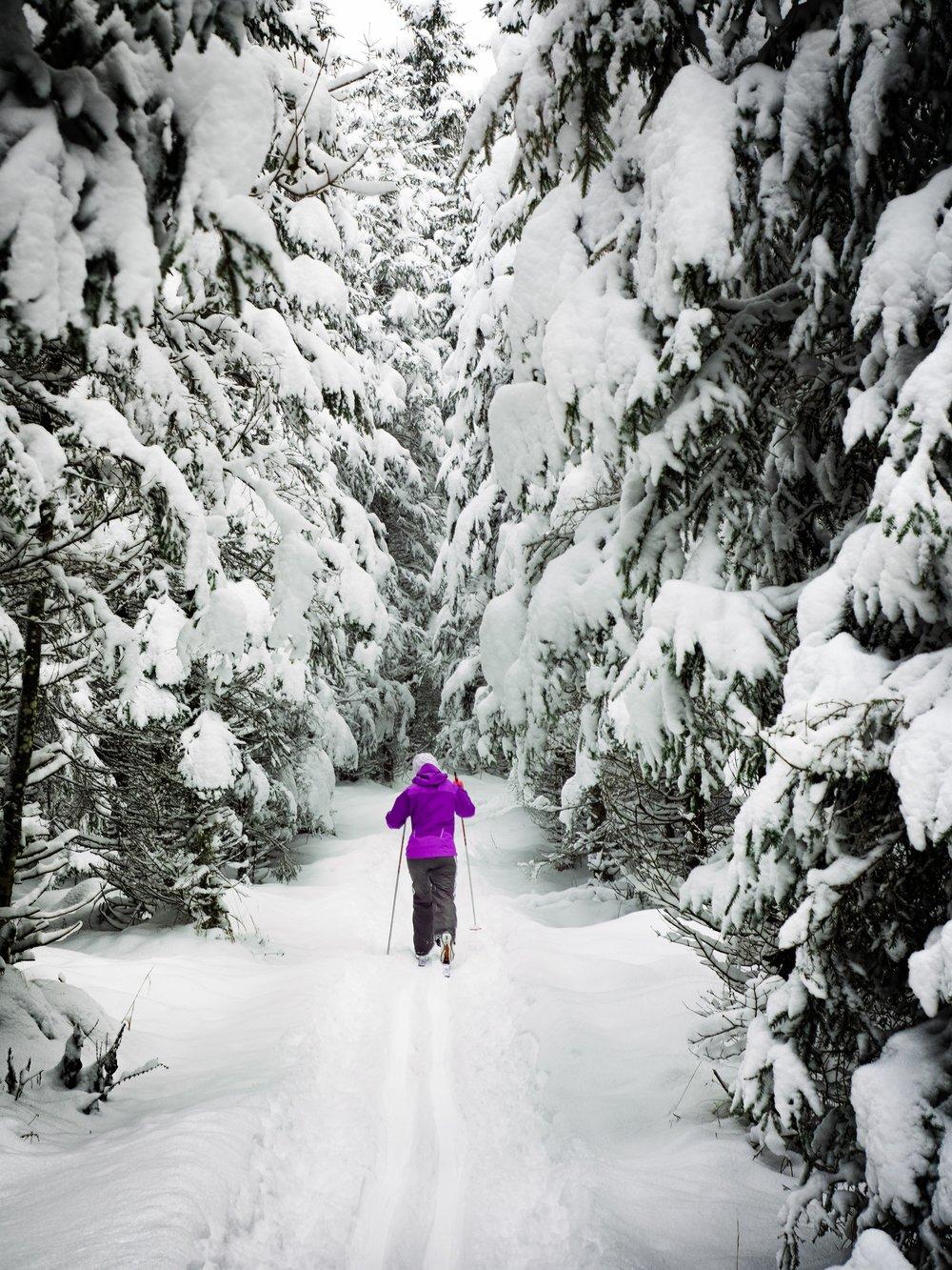 - XC Skiing