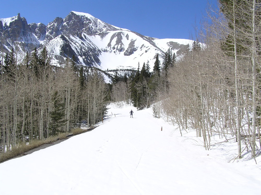 - Snowshoeing