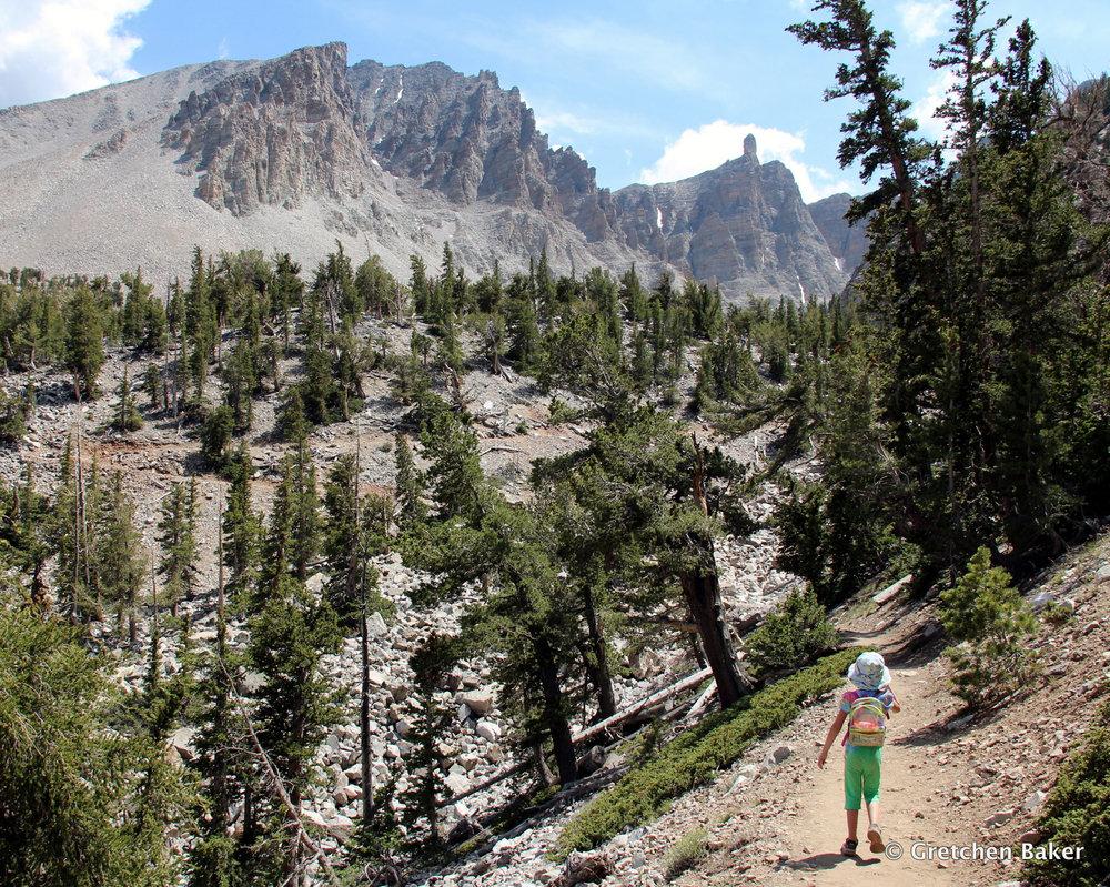 Gretchen Baker_hiking to bristlecones.JPG