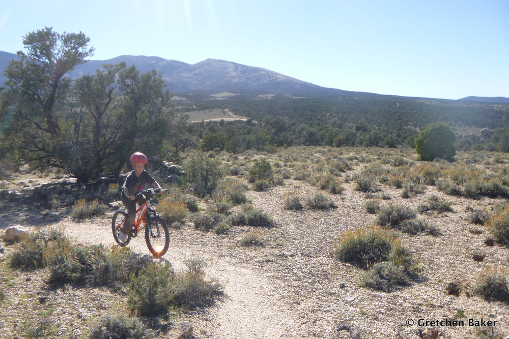 Gretchen Baker_mountain biking Sac Pass trails.JPG