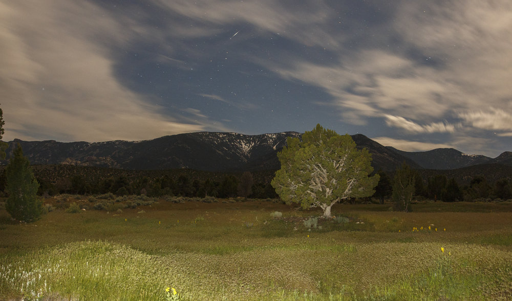 - camping near great basin national park