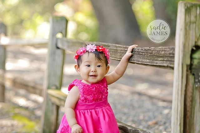How's your week going?  #orangecountyphotography #ocphotography #orangecountyphotographer #ocphotographer #occhildphotographer #occhildphotography #socalchildphotographer #familyphotos #sjpchildren #sadiejamesphotography #sadiejamesphoto #babyphotograhpy #babyphotographer #orangecountybabyphotographer #orangecountybabyphotography #ocbabyphotographer #ocbabyphotography #9monthsold