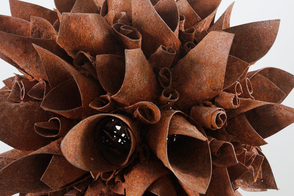Fruit - Detail.jpg