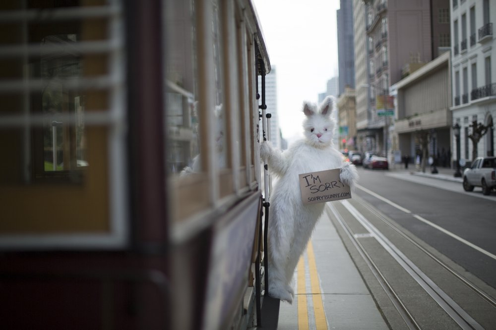 Bunny on trolley.jpg