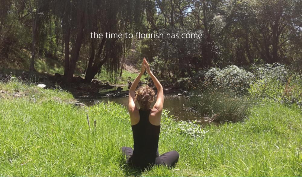 generative yoga pic.png