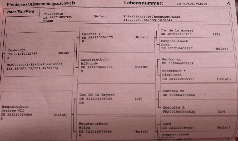 Champorado Affair Passport 4.JPG