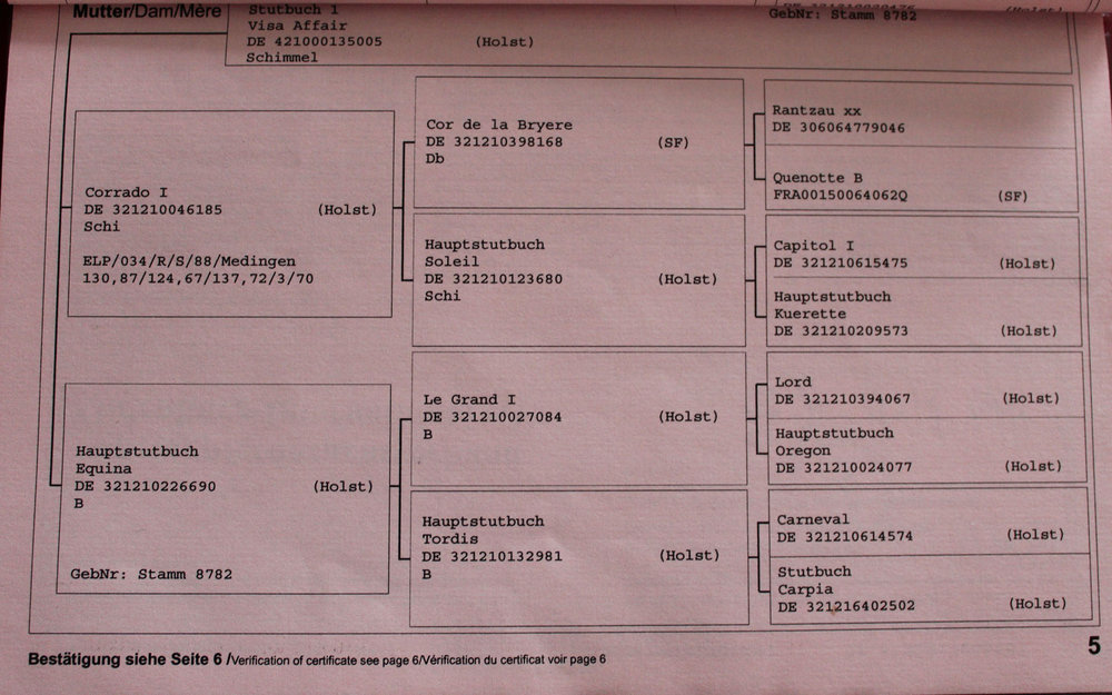 Champorado Affair Passport 5.JPG