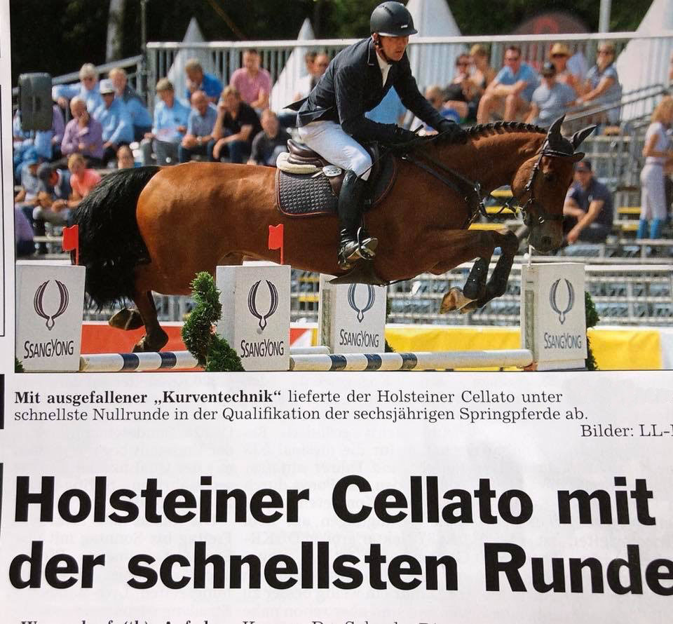 Article written on Cellato after 2018 German Championship show
