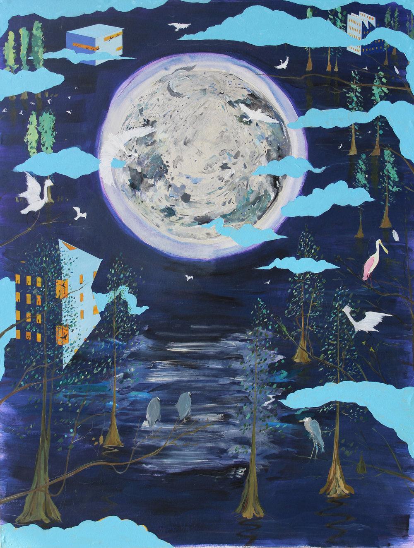 """Lunar Reflections"""