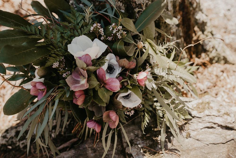 Katie Whalen Photography