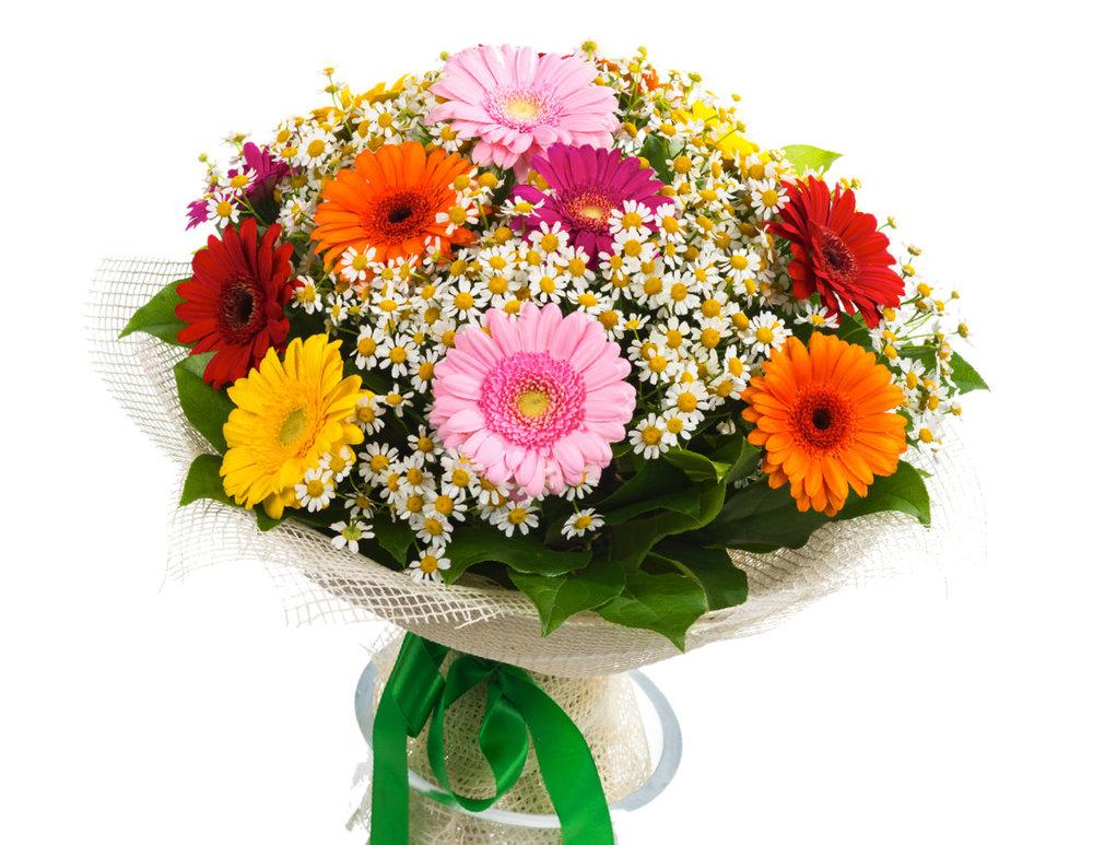 flower_sp.jpg