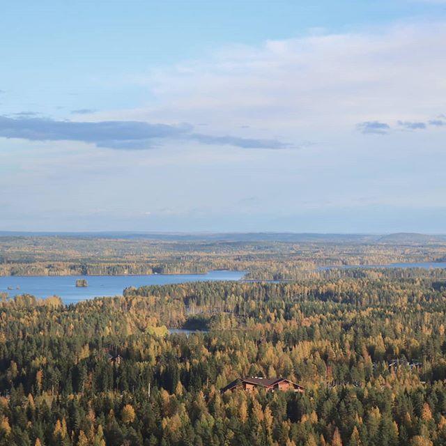 Happy Independence Day our Beautiful Home Country 🇫🇮 • Hyvää Itsenäisyyspäivää 101-vuotias Suomi 🇫🇮 . . . #independenceday #finland #suomi #suomi101 #beautyofsuomi #visitfinland #discoverfinland #outdoorfinland #luontoonfi #yleluonto #ulkonaperillä
