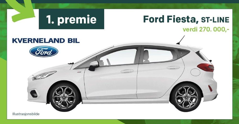 Ford Fiesta trekt på startnr.