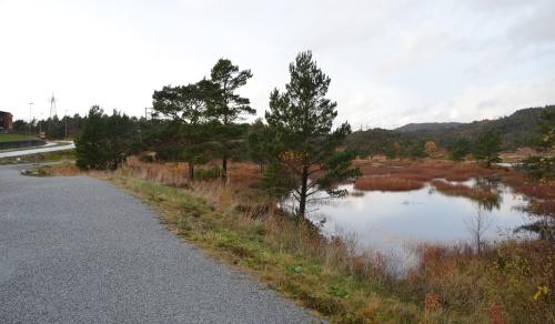 Brekkeløypa - tur i løya ein del av seminaret
