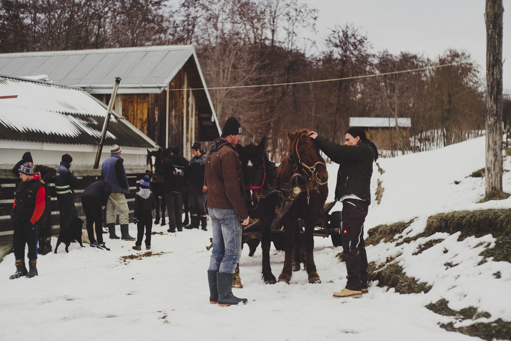 Team Equiwent liefert auch bis zu minus 33°C Hilfsgüter für Menschen und Pferde in die entlegensten Winkel unserer EU. Jährlich liefert Equiwent über 30 Tonnen Hilfsgüter nach Ostrumänien. Nicht Altkleider, sondern Medikamente, Gerätschaften, Grundnahrungsmittel und Bildung haben wir im Gepäck!