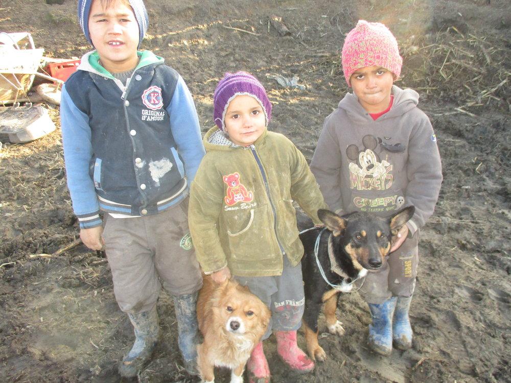 Ostrumänien, diese EU-Bürger werden stets vergessen. Unsere Adoptionsgruppe gibt vielen Kindern Halt und Hoffnung. Wir versuchen eine faire Chance zu bieten…