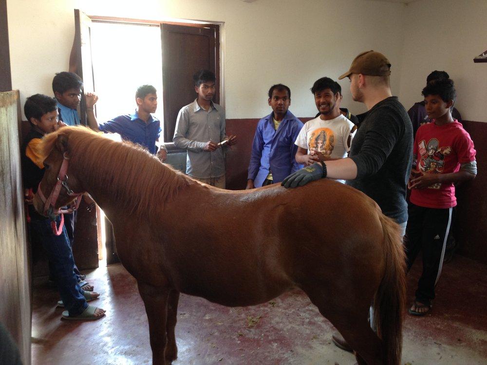 Es war der erste Auslandseinsatz für Jannis Raabe.     Ob ich stolz auf meinen Sohn bin? Und ob! Jannis erzählte mir später das     es einfach nur nette und freundliche Menschen in Nepal sind. Sie sind sehr bemüht     aktiv zu helfen. Der Mann, in der Mitte, mit dem blauen Hemd     ist übrigens der Pferdepfleger welcher im Waisenheim arbeitet. Er soll im     Sommer 2016 zu uns reisen um noch einmal intensiv mit uns zu arbeiten.