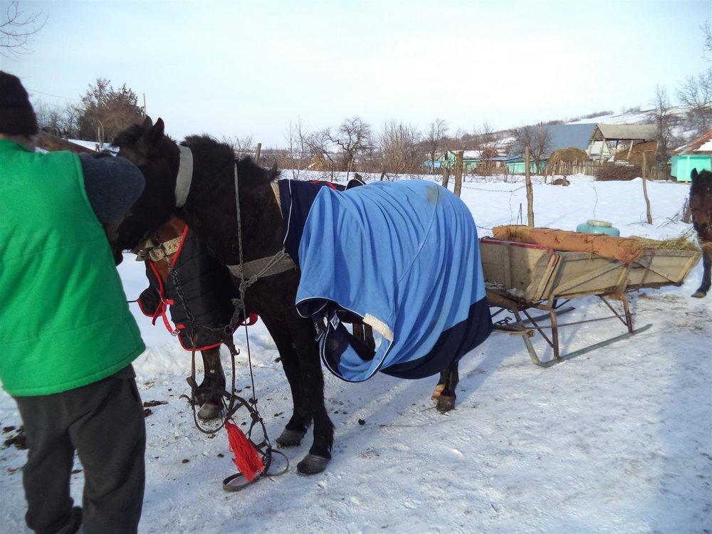 Die weiße Jahreszeit ist für eine romantische Jahreszeit:     Aber der Schein trügt. Es lauert Hunger und Elend in Ostrumänien.