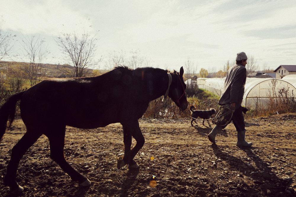 Die Armutsfamilien von Ost-Rumänien -