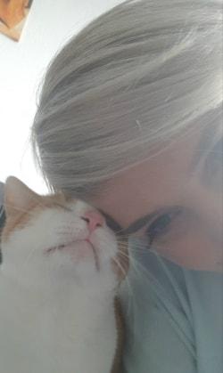 When all else fails.. - Hug the Cat
