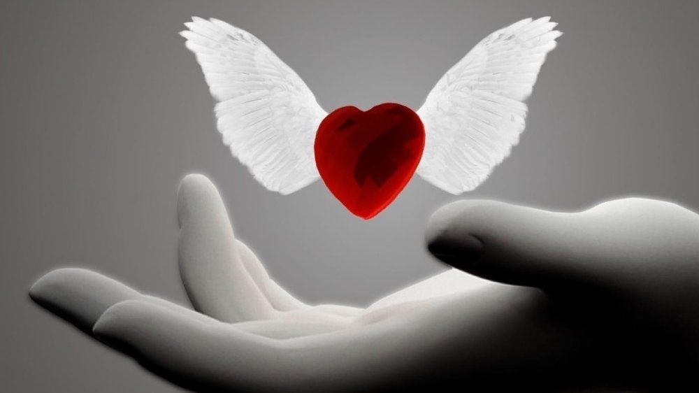 9867-heart-with-wings-1920x1080-digital-art-wallpaper.jpg
