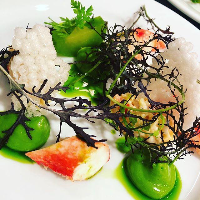 Kingcrab salad for starter🦀 . #catering #cateringlife #cheflife #gastronomia #truecooks #chefsofinstagram #chefsroll